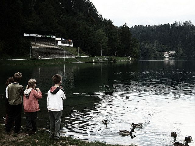 Lake Bled Slovenia with kids